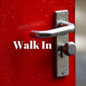 Item #2~Walk-in (Adult)